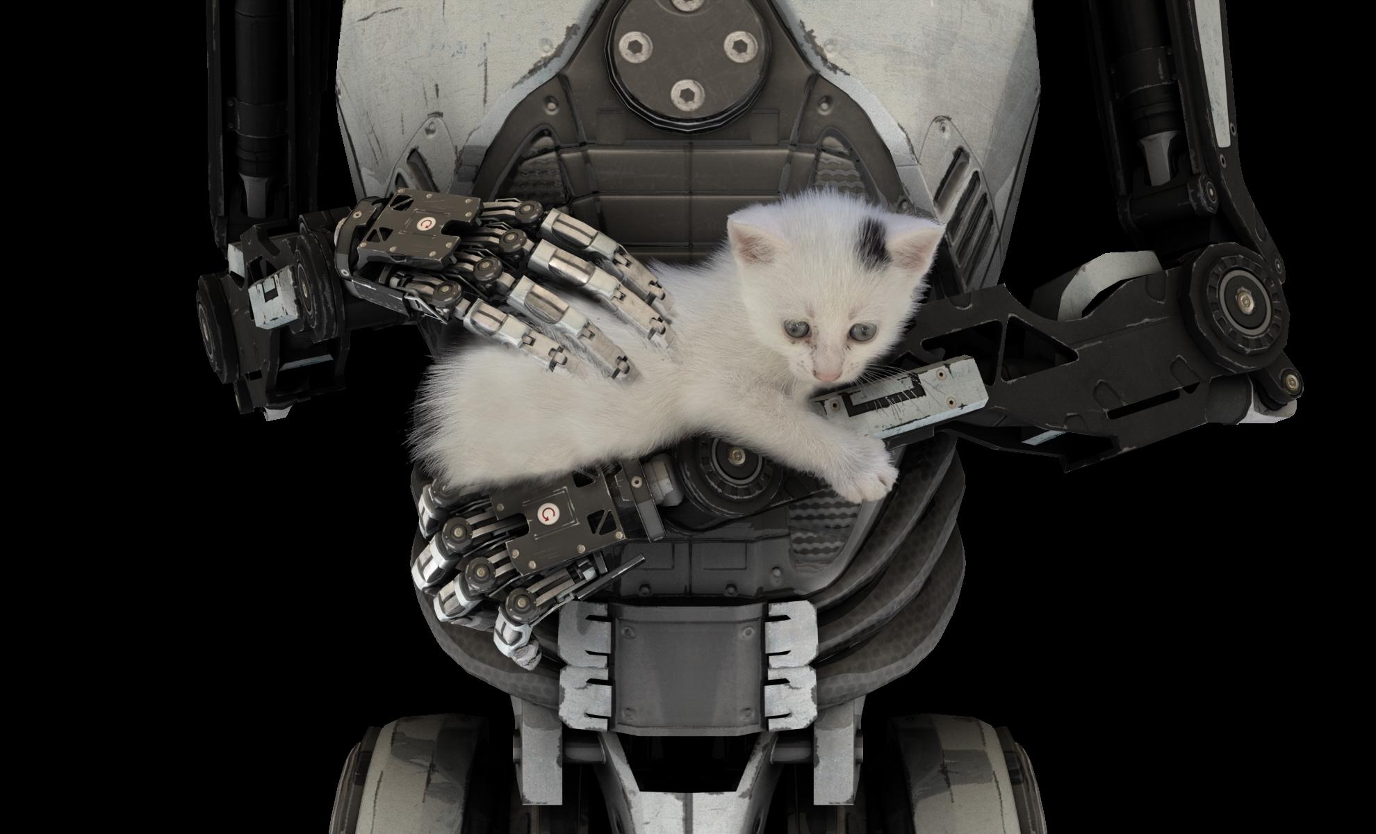 RobotAndCat